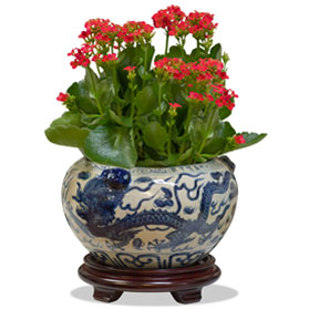 Blue and White Porcelain Double Dragon Asian Planter
